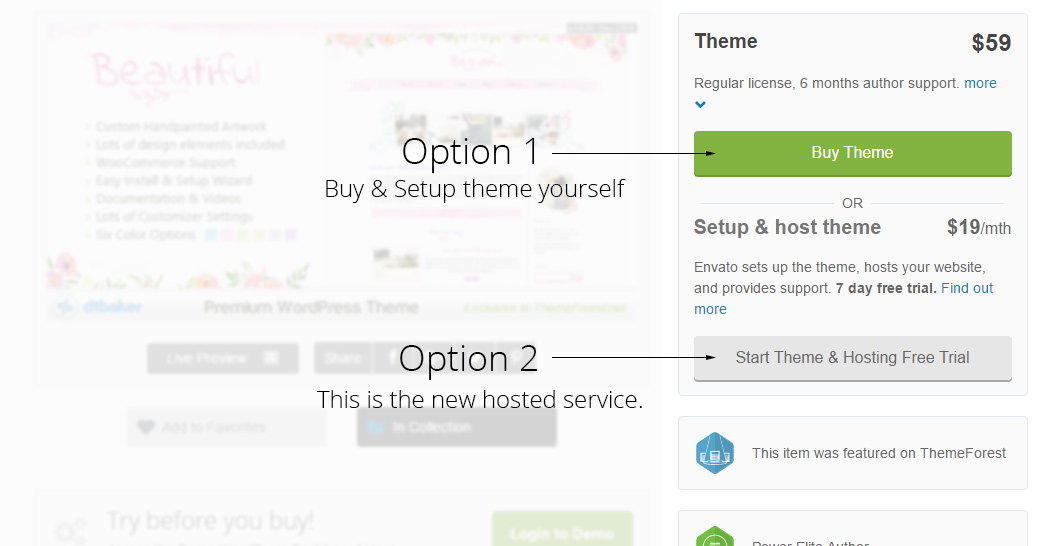envato hosted options