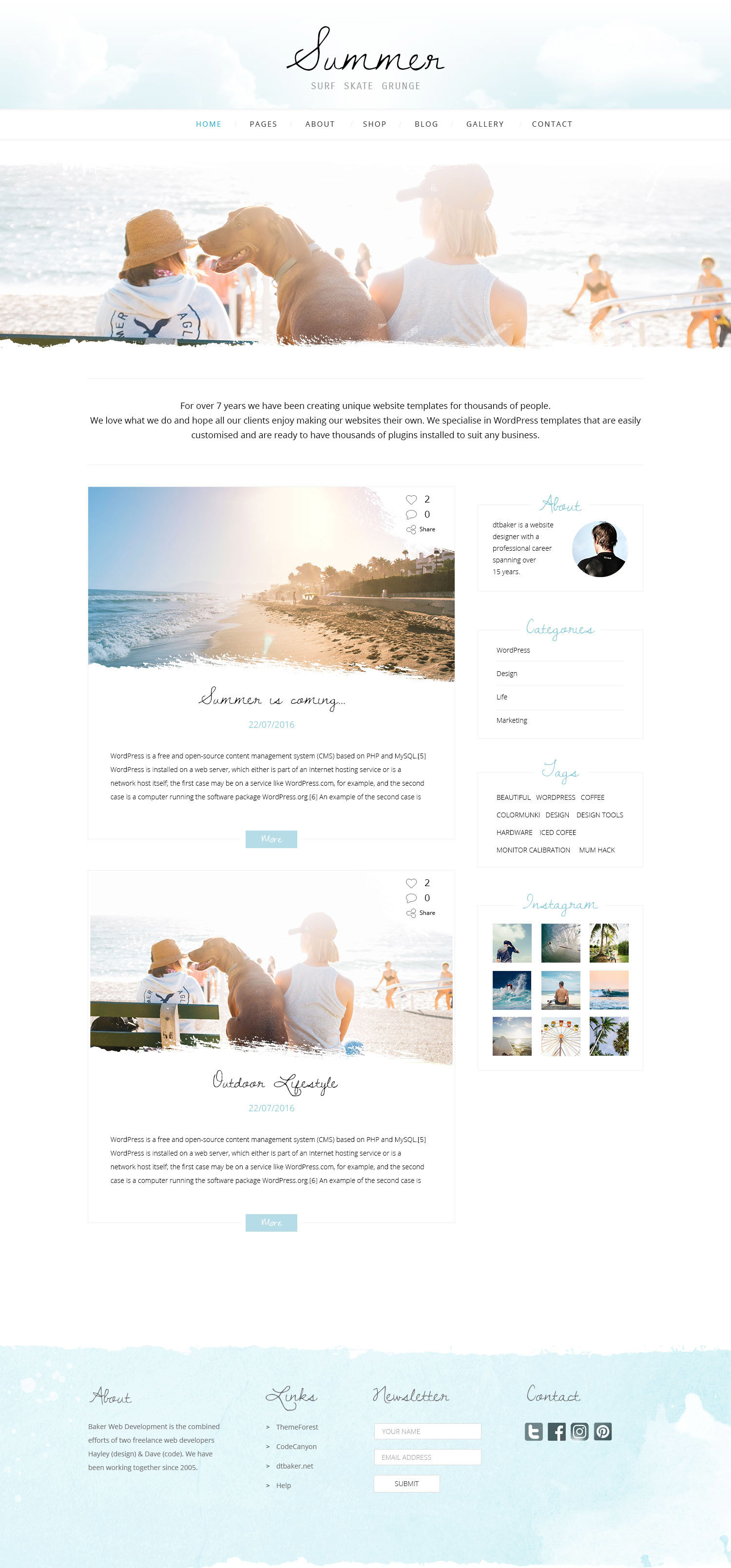 Summer Grunge wordpress theme